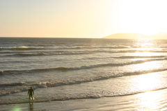 Alone and free. One person alone on beach in waves on shore royalty free stock photography
