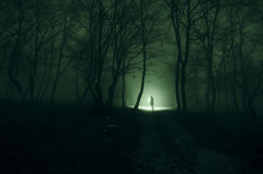 Alone girl with the light in the forest at night, or blue toned stock image