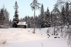 Alone home in Winter forest Stock Photography