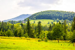 Free Alone House On The Hill Stock Image - 98297041