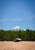Alone hut on ground forest Royalty Free Stock Photography