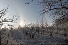Alone il giorno di inverno Fotografia Stock