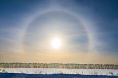 Alone intorno al sole su cielo blu nell'orario invernale Immagine Stock Libera da Diritti
