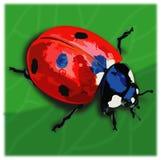 Alone Ladybugs royalty free illustration