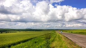 Alone man on country road viewing in wheat field with clouds sto Royalty Free Stock Images