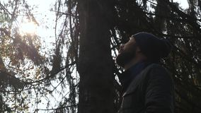 Alone man looks up standing in forest. Concept adventures stock video footage