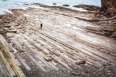 Alone man at sea on a rocky shore Royalty Free Stock Photography