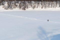 Alone man walking on a winter path Stock Photos