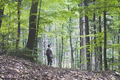 Alone man in wild forest. Travel and adventure concept. Mountains landscape photography stock photography
