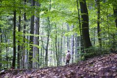 Alone man in wild forest. Travel and adventure concept. Mountains landscape photography royalty free stock photo