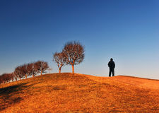 Alone with Nature Stock Images