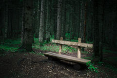 Alone old wooden bench near green forest Stock Photos