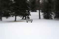 Alone park bench. Park bench sitting in the middle of a park after a snow fall Royalty Free Stock Photo