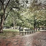 Alone at the park. Walking in the rain Royalty Free Stock Photos