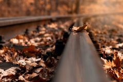 Alone on the rails. royalty free stock photography
