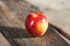Alone red apple Royalty Free Stock Photo