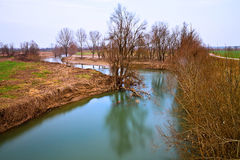 Alone river. Blue river btw dead vegetation and trees Stock Image