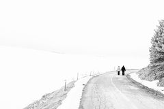 Alone on the road Royalty Free Stock Image