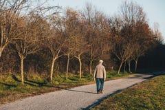 Alone senior man walking and enjoying a walk in an autumn park a stock photography