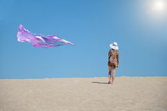 Alone in the sun desert Royalty Free Stock Photography