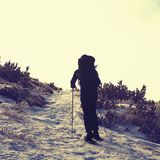 Alone tourist with big backpack and snowshoes walking on snowy path to fog. National park Alps park in Italy. Fogy winter weather. Royalty Free Stock Images