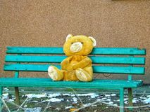 Teddy bear alone on a bench. Alone toy snow object teddy doll fluff bench outdoors single children sitting waiting background bear royalty free stock image