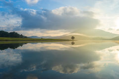 Alone tree in the lake. Beautiful morning moment in the lake with alone tree royalty free stock image