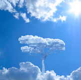 Alone tree in sky. Stock Images
