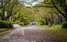 Alone umbrella. An umbrella on the floor with flower under the tree left out behind people Stock Images