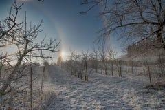 Alone un giorno di inverno Fotografie Stock Libere da Diritti