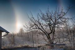 Alone un giorno di inverno Fotografia Stock Libera da Diritti