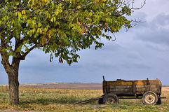 Alone wagon. The wagon is located near a tree on the brink of a field with a dry grass stock photo