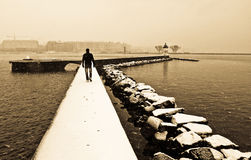 Alone in the winter Royalty Free Stock Photo