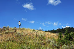 Alone in Yellowstone Stock Photos