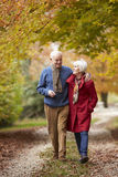 along autumn couple path senior walking Στοκ εικόνα με δικαίωμα ελεύθερης χρήσης