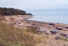 Along the beach there are bigger and smaller stones. The sandy coast and horizon of the Baltic Sea; the sea is calm, without waves; along the beach there are stock image
