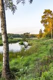 Along this birch tree you see Lake `Patersmoer` in the late afternoon sun near Strijbeek, Netherlands stock photography