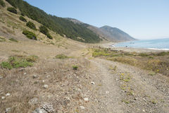 Along California's Lost Coast. Stock Photos