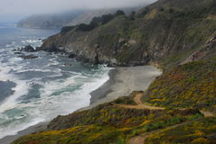 Along Highway One. Beautiful sandy beaches, and rocky shores along California's Highway One coast highway. Wildflowers blanket the rocks and cliffs Stock Photo