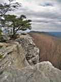 Hanging Rock State Park. Along a hiking trail near Wolf Rock at Hanging Rock State Park in North Carolina Royalty Free Stock Photo