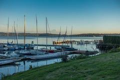 Along Lake Washington - Rainer 4 Stock Image