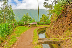 Along the Levada, Madeira Stock Photography