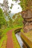 Along the Levada, Madeira Stock Image