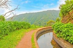 Along the Levada, Madeira Royalty Free Stock Photography