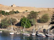 Along the Nile. Nile river shore near Aswan, Egypt Royalty Free Stock Photography