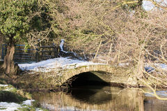 Along the River Derwent Royalty Free Stock Photography