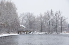 Along the River after a Fresh Snowfall Royalty Free Stock Images