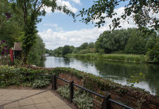 Along the River Great Ouse Stock Image