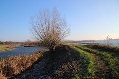Along river Rhine named Nederrijn in autumn sun located at the town of Elst. Along river Rhine named Nederrijn in autumn sun located at the town of Elst stock images