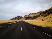 Along the road. Viewing mountains and golden field by sides of the black road in Iceland Stock Photo